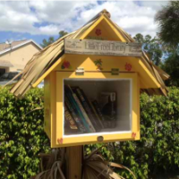 Tiny Libraries, Big Communities