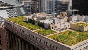 In 2008, Chicago was  the city with the most square feet of green roofs than any city.