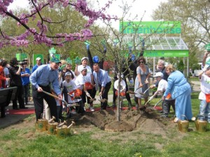 Toyota Contributes $1.4 Million to MillionTreesNYC