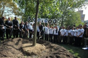In January of 2012, the 500,000 tree was planted