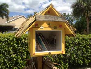 Tiny Libraries, Big Communities