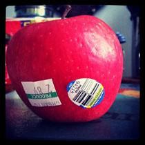 Should I Buy Organic or Not!? ~Monica Johnson