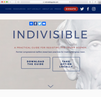 The Indivisible Guide to Activism Smarts